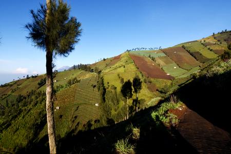 The scenery around the Semeru mountain Stock Photo
