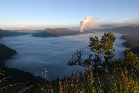 Mount bromo seen from the height of the mountain slopes Semeru, Lumajang, Indonesia