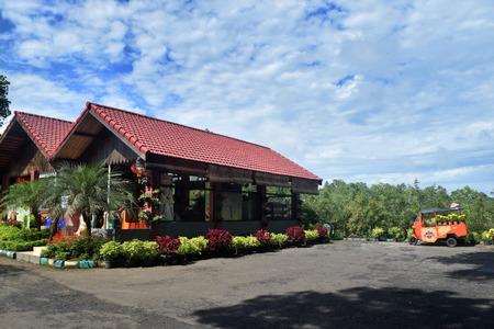 Chrysanthemum Garden in Pasuruan, East Java, Indonesia on Ferbruary 7, 2016 報道画像