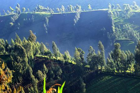 Natural scenery in Argosari village on the slopes of Mount Semeru, Indonesia
