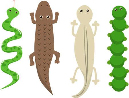 newt: animals clip art