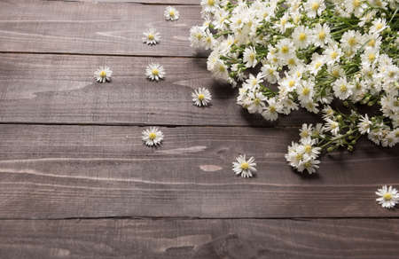 spacial: White cutter flowers are on the wooden background.