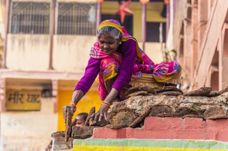 dung: An old woman dried cow dung for a camp fire in Varanasi, India  Editorial