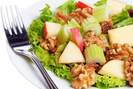 Waldorf salad with walnuts, apple, celery on a bed of lettuce Stock Photo - 13559279