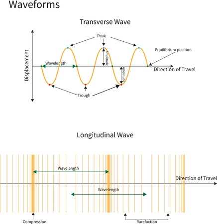 transverse: Diagram showing transverse and longitudinal wave forms.