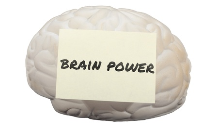 Post-it note with the words Brain Power on a model of human brain