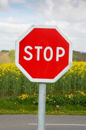 Stop traffic sign with grenola plants in the background