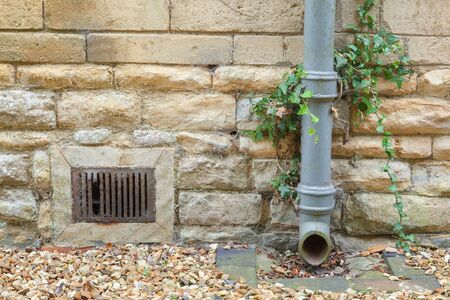 Cast iron drainpipe against a limestone wall with ivy growing up  photo