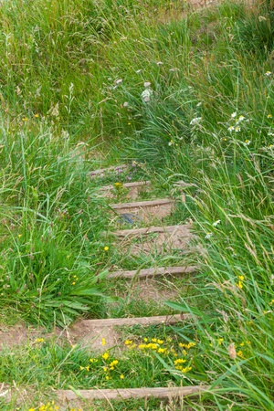Grassy pathway leading up steps Stock Photo - 21821782