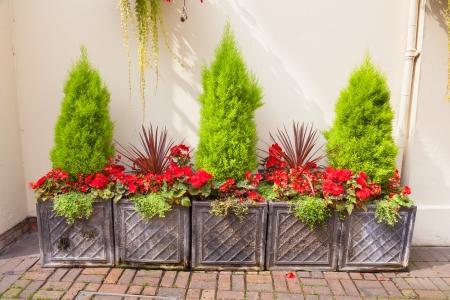 Courtyard garden arrangement of planters