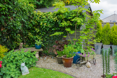 Suburban garden with shed and plant containers photo