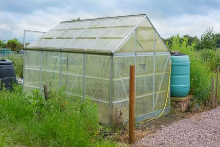 Allotment garden green house with water butt