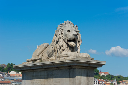 Lion Statue Chain Bridge Budapest Hungary