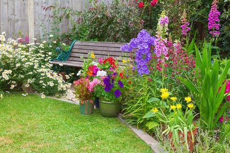 Cottage garden with wooden bench and flowers in containers.