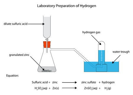 Labelled diagram for laboratory preparation of hydrogen from zinc and sulfuric acid Illustration