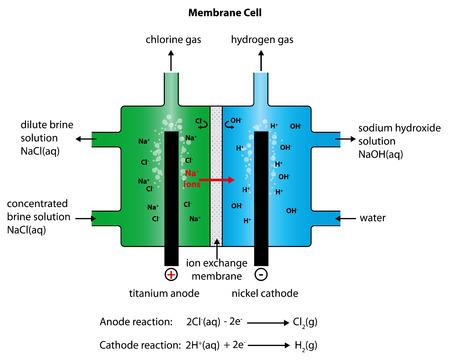 Illustratie van de vervaardiging van chloor en natriumhydroxide met behulp van een membraan van de cel