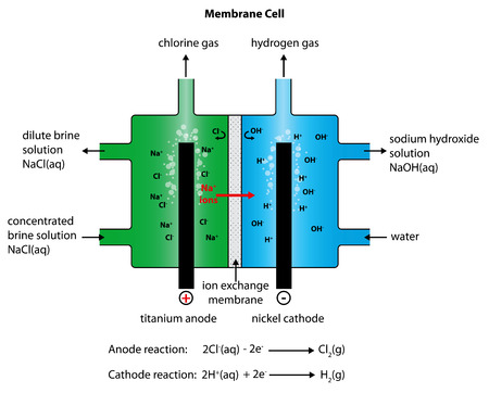 membrane: Illustration of the Manufacture of Chlorine and  Sodium Hydroxide  using a Membrane Cell