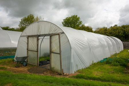 Horticultural polytunnel for growing tender plants.