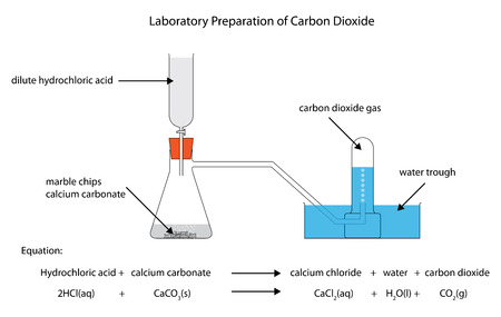 Diagram of the laboratory preparation of carbon dioxide