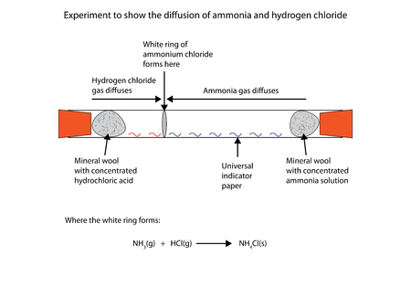 Labelled diagram to show the diffusion of ammonia and hydrogen chloride