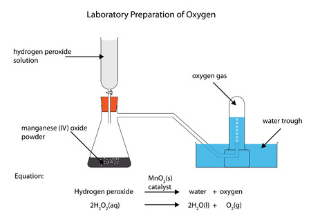 labelled: Laboratory preparation of oxygen Illustration
