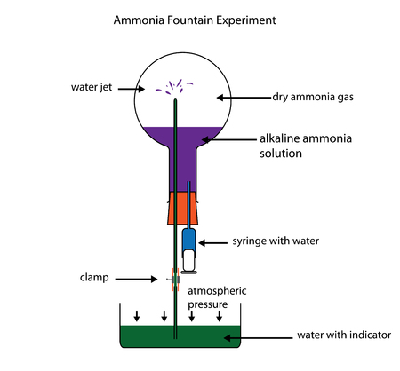 labelled: Ammonia fountain experiment to demonstrate the solubility of ammonia gas. Fully labelled diagram. Illustration