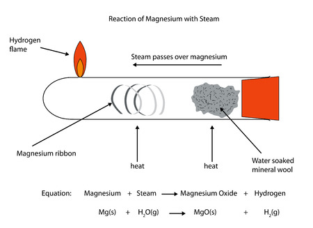 react: Labelled diagram of magnesium reacting with steam.