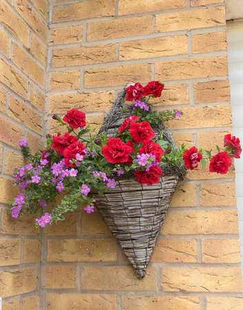 Cone shaped wicker hanging basket with beautiful pink and red petunia plants.