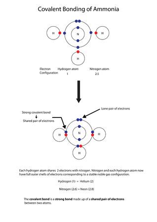 Diagramm zur Veranschaulichung der kovalenten Bindung in Ammoniak mit einem vollständig beschrifteten Diagramm.