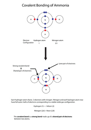 Diagram to illustrate covalent bonding in amonia with a fully labelled diagram.