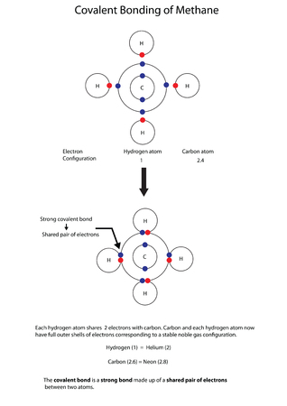 Diagram to illustrate covalent bonding in methane with a fully labelled diagram.