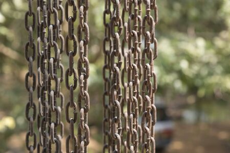 Vertical hanging rusty iron chains showing weathering covered with cobwebs.