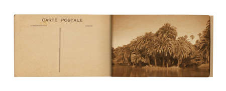 14 Postcard Album    Old postcard album with picture of a lake with palms