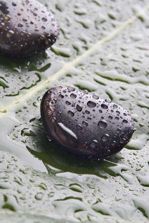 lastone: Lastone therapy rocks on a green leaf Stock Photo