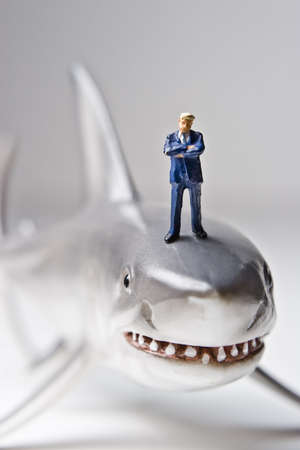 exacting: Business figurines placed with a shark figurine.