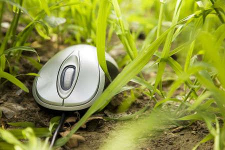 myszy: Mysz komputerowa metaliczny umieszczone poza w trawÄ… Zdjęcie Seryjne