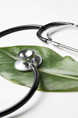 estetoscopio corazon: estetoscopio en una hoja