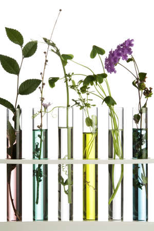 plant drug: Flowers and plants in test tubes