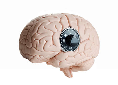 dial lock: Human brain model with a dial lock Stock Photo