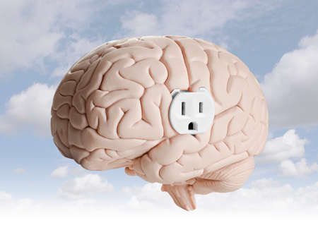 Brain power  Brain model with an electrical outlet