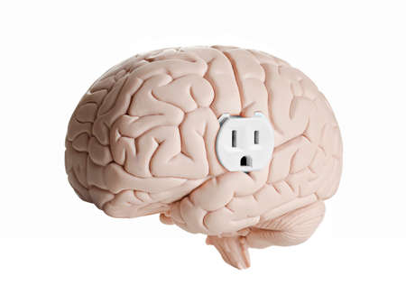 Brain model with an electrical outlet against a white Reklamní fotografie