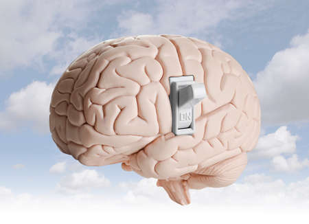 switch on the light: Modelo de cerebro con un interruptor de luz