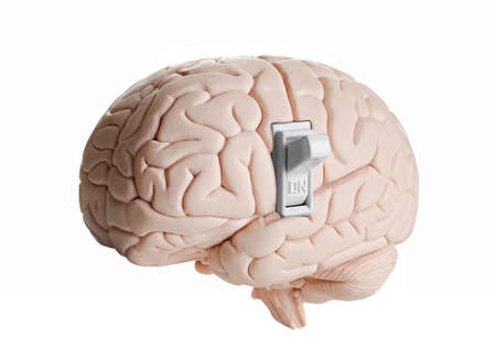 Hersenen model met een lichtschakelaar