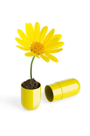 Pill with a flower growing out of it Stock Photo