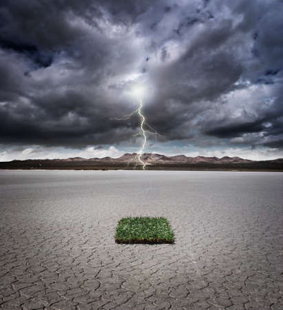 Patch of grass in a dry lake bed with storm clouds and lightning Banco de Imagens