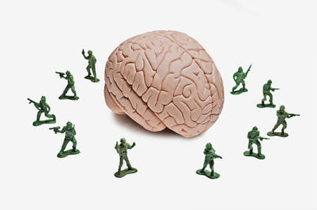 Toy soldiers surrounding a human brain model