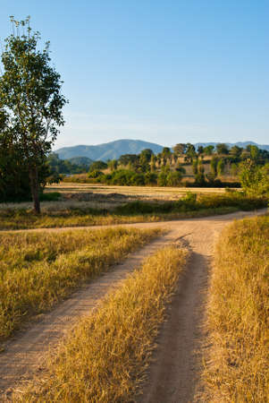 Trail to the village in the Northern of Thailand photo