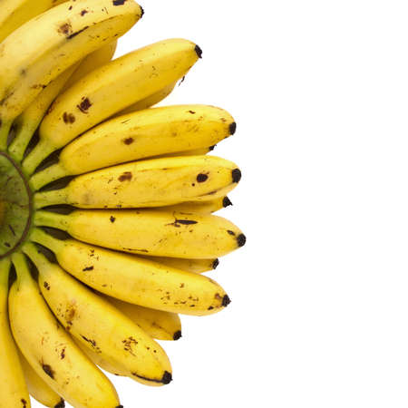 Banana Stock Photo - 10233220