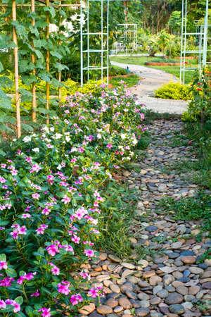 Dort im Sommer im Garten