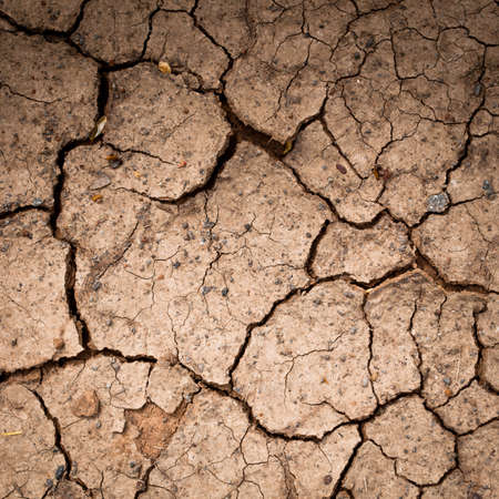 Cracked and dry soil textured Stock Photo - 10260153